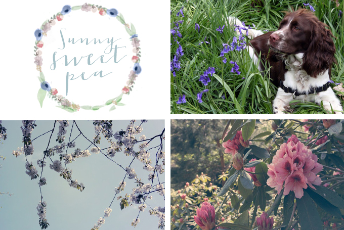 Monthly Blog Crush : June Laura Ashley
