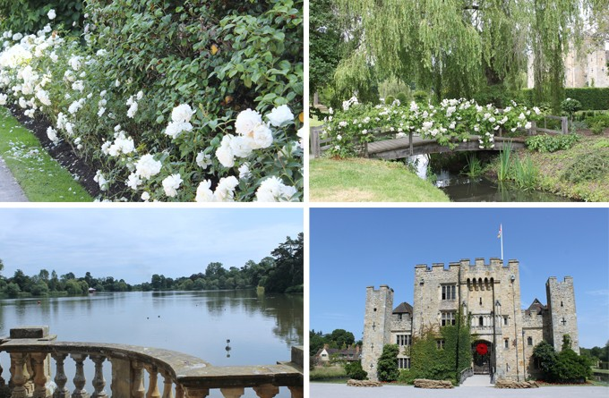 Hever in Bloom