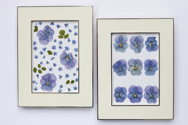 Laura-Ashley-Pressed-Flowers-Flowerona-4