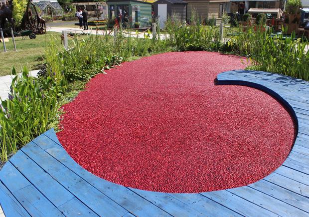 blog-cranberry2