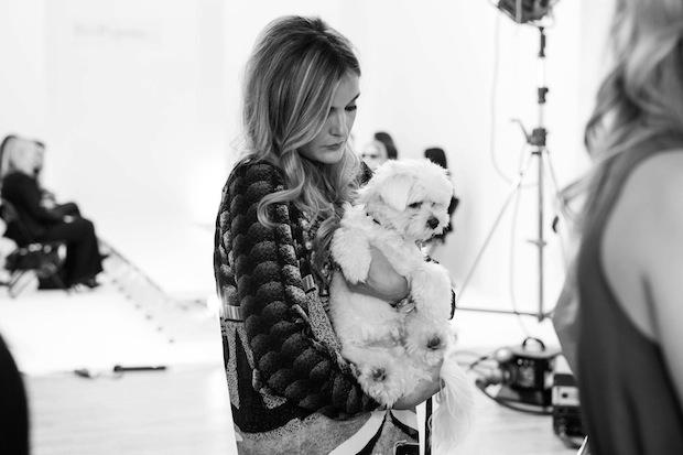 pets pyjamas shoot