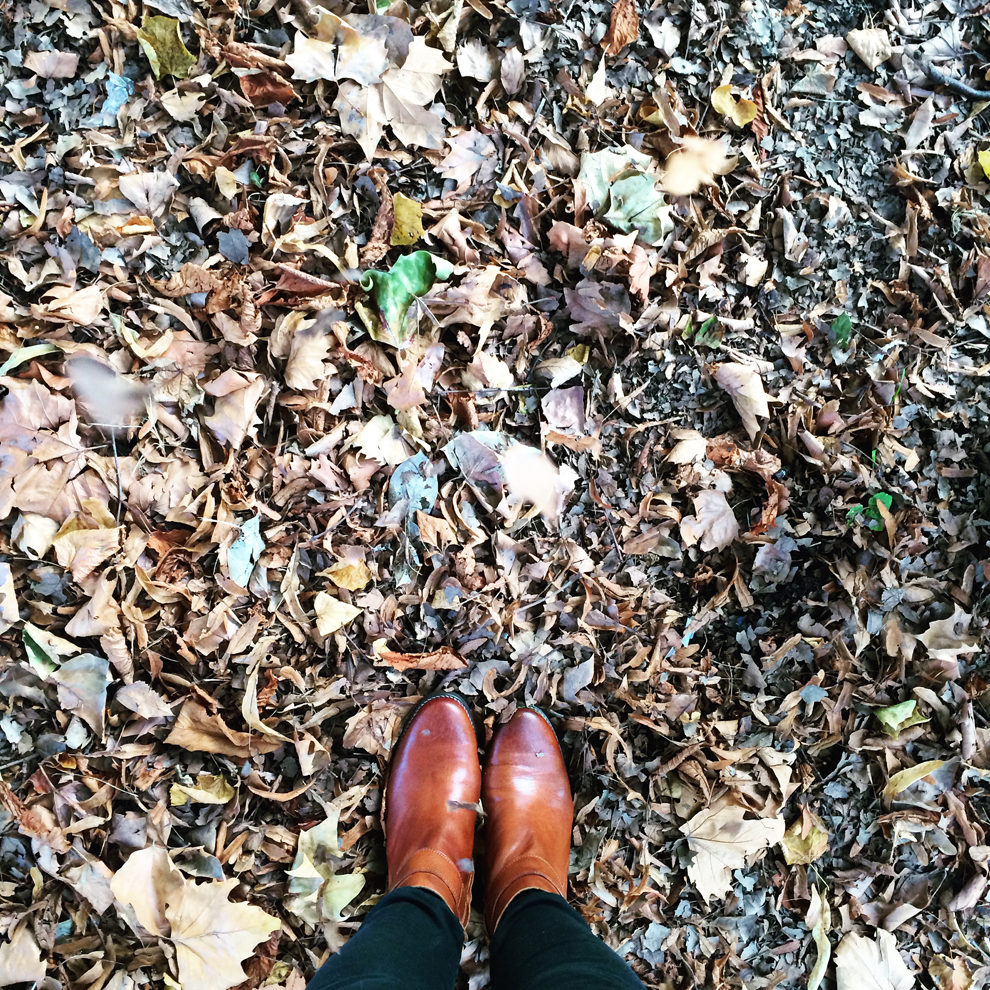 Laura Ashley #FromWhereIStand