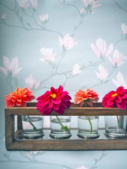 Melanie Lissack How To Create Your Dream Wonder Walls Home Accessories