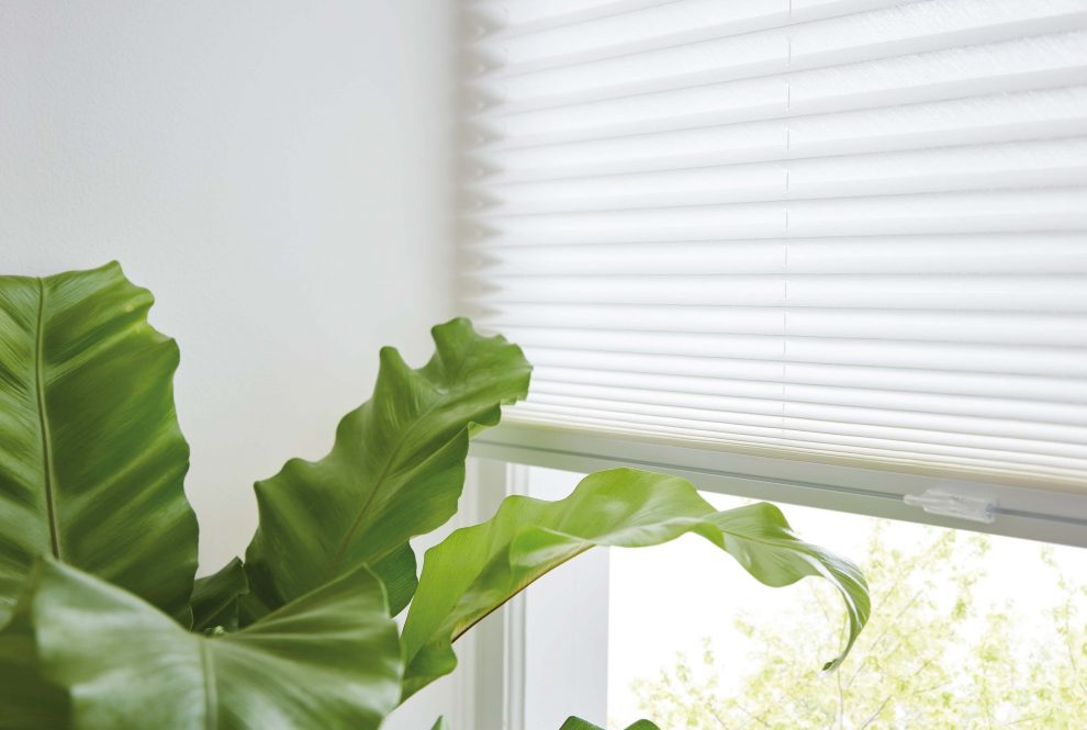 Our Tips On Keeping Your Conservatory Cool Insider Tips