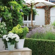 Simple ways to protect your pots through the seasons
