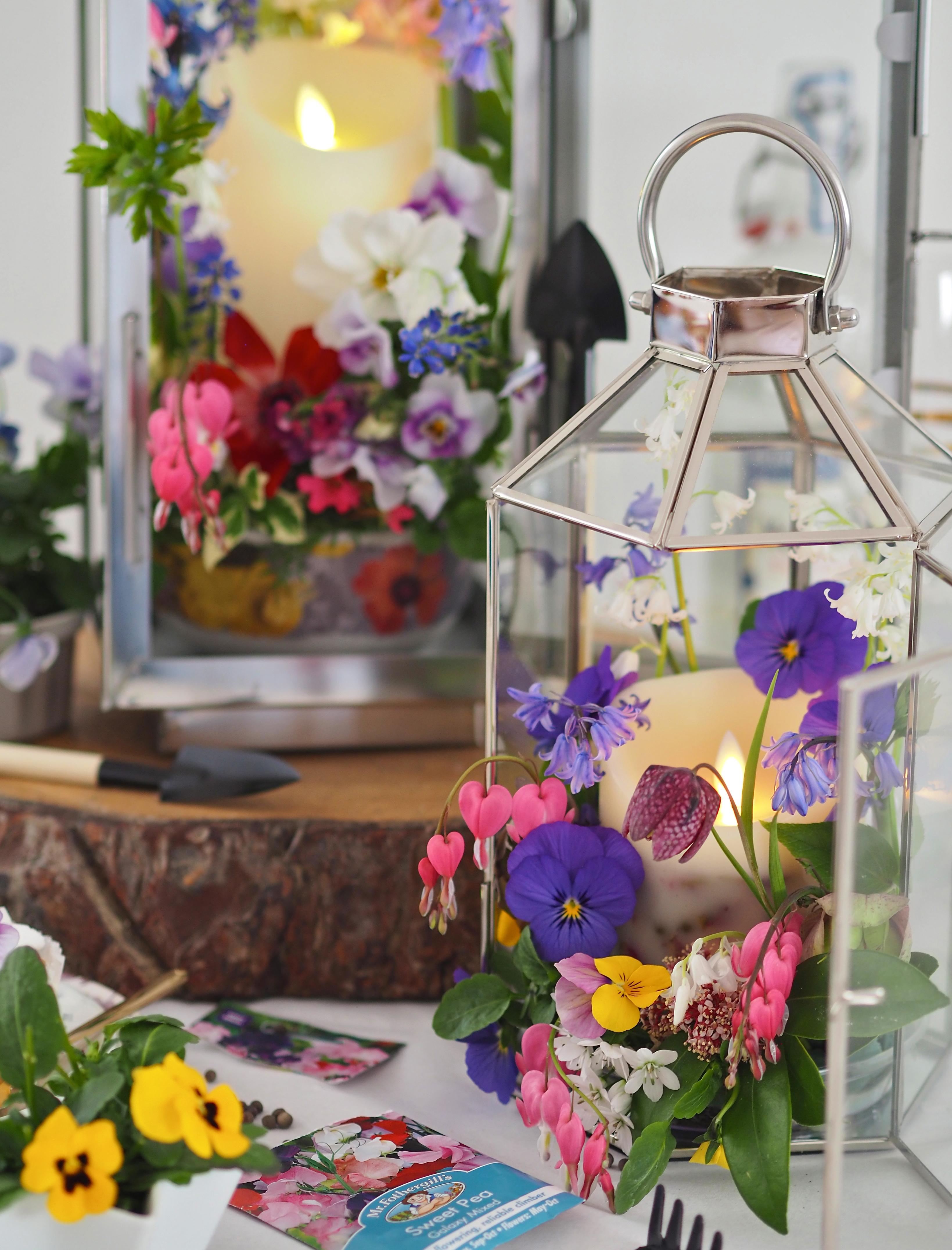 DIY Decorative Planted Lanterns jjj