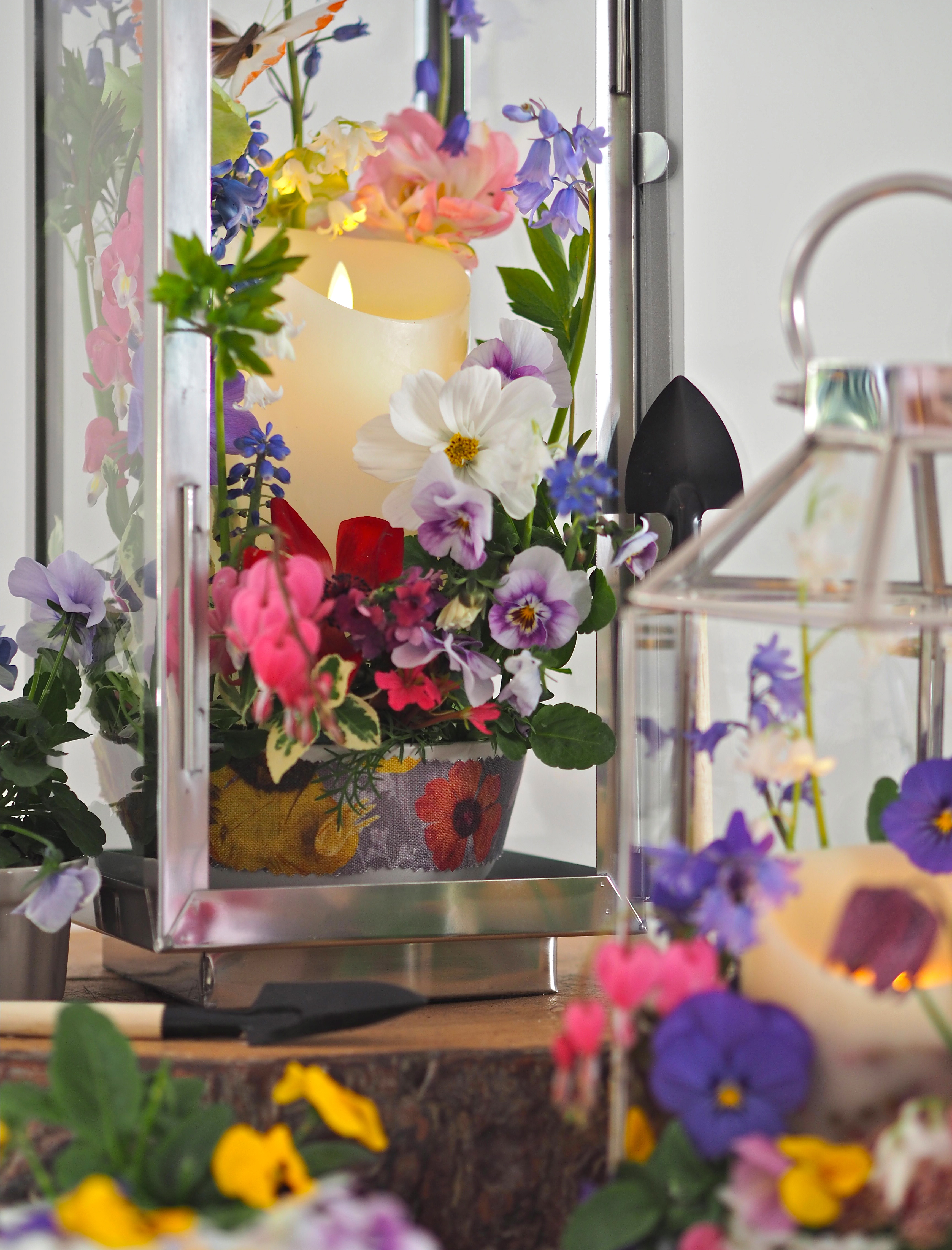 DIY Decorative Planted Lanterns