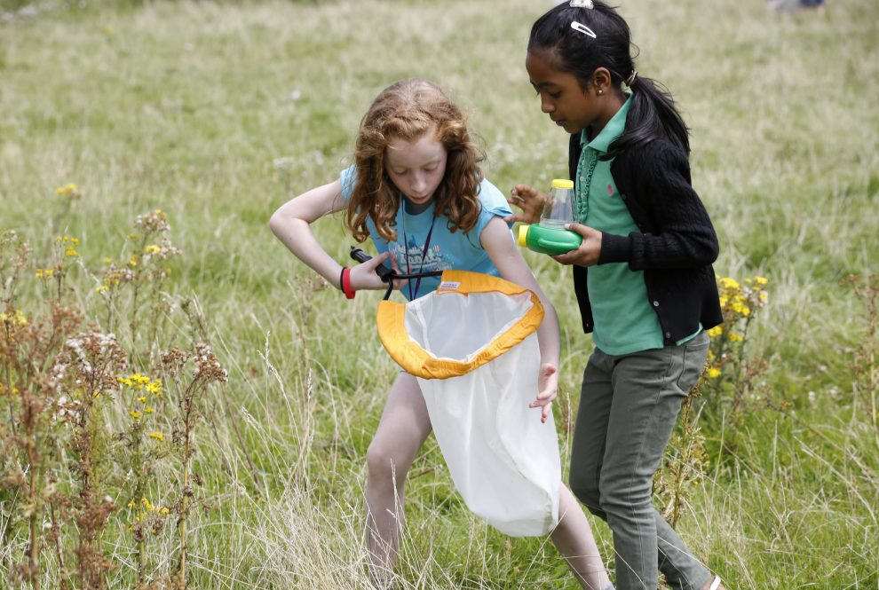 Great things to do with the kids this May half term
