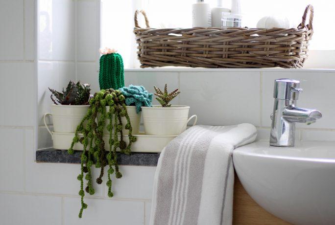 DIY simple crochet succulent